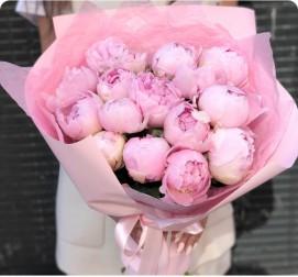 Пионы розовые 15 штук