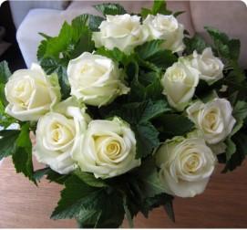 Белые розы 11 штук