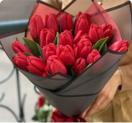 Красные тюльпаны 21 штука