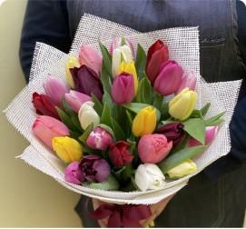 Тюльпаны MIX 31 штука